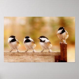 four little chickadees poster