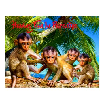 Four Little Monkeys Postcard