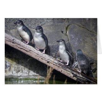 Four Little Penguins Card