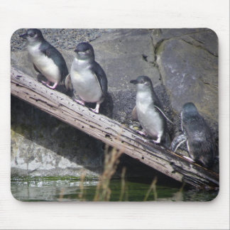 Four Little Penguins Mouse Pad