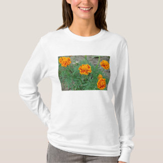 Four  Marigolds T-Shirt