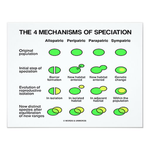 Four Mechanisms Of Speciation (Evolution) 4.25x5.5 Paper Invitation Card