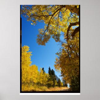 Four Mile Road, Cripple Creek, Colorado Poster