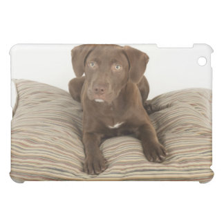 Four-Month-Old Chocolate Lab Puppy on Pillow iPad Mini Case