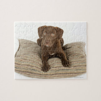 Four-Month-Old Chocolate Lab Puppy on Pillow Jigsaw Puzzle