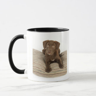 Four-Month-Old Chocolate Lab Puppy on Pillow Mug