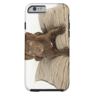 Four-Month-Old Chocolate Lab Puppy on Pillow Tough iPhone 6 Case