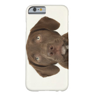 Four-Month-Old Chocolate Lab Puppy Portrait Barely There iPhone 6 Case