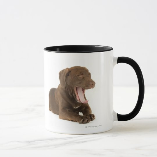 Four-Month-Old Chocolate Lab Puppy Yawning Mug