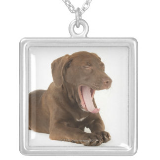 Four-Month-Old Chocolate Lab Puppy Yawning Silver Plated Necklace