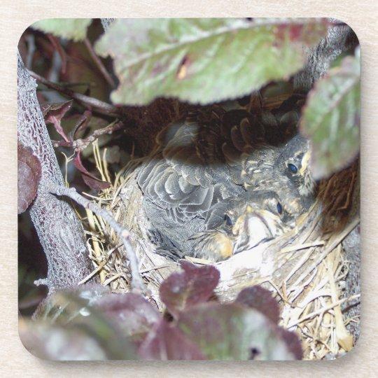 Four Nestling Robins Photo Cork Coaster