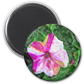 Four O'clocks Flower 2 Inch Round Magnet