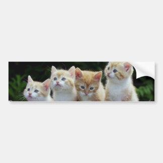 Four Of A Kind Bumper Sticker