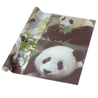 four panda images collage wrapping paper