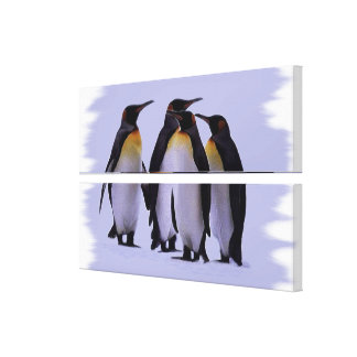 Four Penguins Gallery Wrapped Canvas