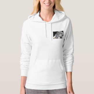 Four Pug Moon Women's Pullover Hoodie