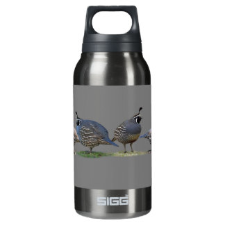 FOUR QUAIL INSULATED WATER BOTTLE