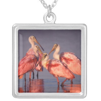 Four Roseate Spoonbills (Ajaia ajaja) at Dawn Silver Plated Necklace
