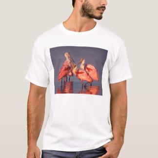 Four Roseate Spoonbills (Ajaia ajaja) at Dawn T-Shirt