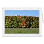 four seasons in michigan 09 card