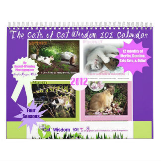 Four Seasons of Cat Wisdom 101 Calendar