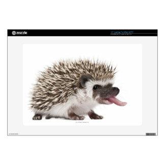 Four-toed Hedgehog - Atelerix albiventris Laptop Skin