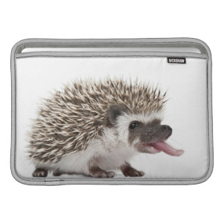 Four-toed Hedgehog - Atelerix albiventris MacBook Air Sleeve