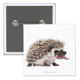 Four-toed Hedgehog - Atelerix albiventris Pinback Button