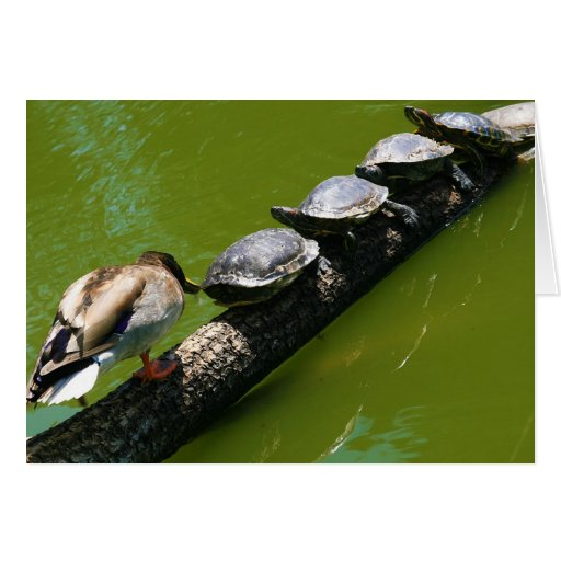 Four Turtles Trying to Cross a Log with Duck Block Card
