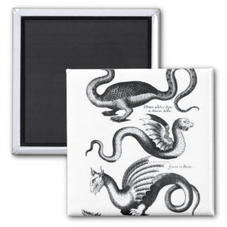 Four types of dragon 2 inch square magnet