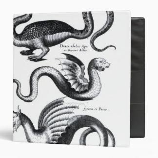 Four types of dragon binder