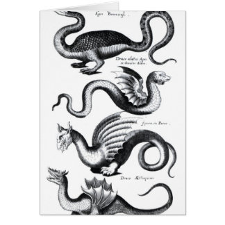 Four types of dragon card