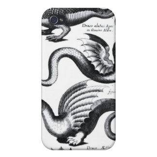 Four types of dragon iPhone 4 case