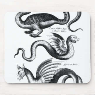 Four types of dragon mouse pad