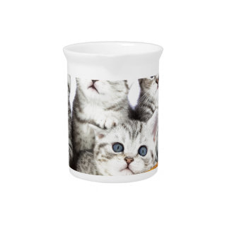 Four young cats sitting in wooden bowl on white drink pitcher