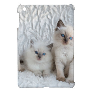 Four young Ragdoll cats sitting in a row Case For The iPad Mini