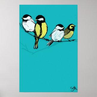 fourcalling-pájaros póster