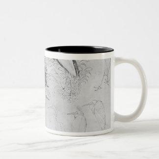 Fourteen egrets, from the The Vallardi Album Two-Tone Coffee Mug
