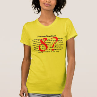 Fourteenth Amendment - 8? Tshirts