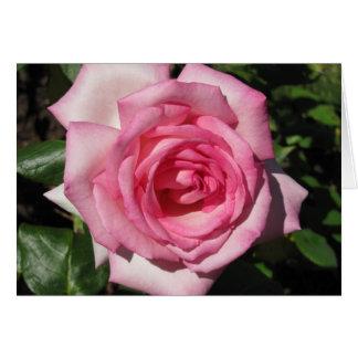 Fourth Chakra Rose Card