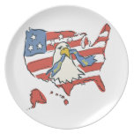 Fourth Of July Dinner Plate