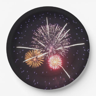 Fourth of July Fireworks Paper Plates 9 Inch Paper Plate