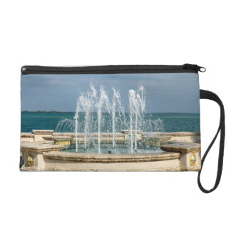 Foutain river sky water coral wristlet clutches