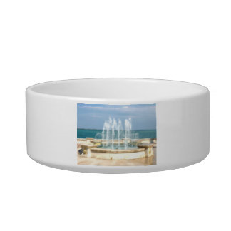 Foutain river sky water coral blur lighten pet water bowl