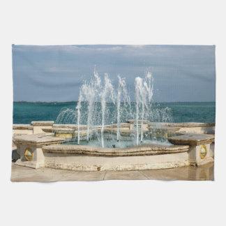 Foutain river sky water coral kitchen towel
