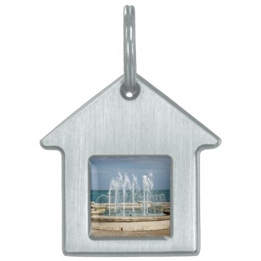 Foutain river sky water coral pet ID tag