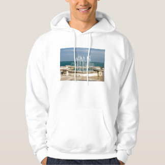Foutain river sky water coral pullover