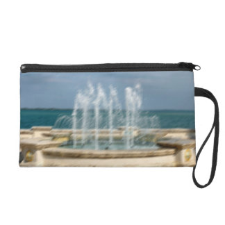 Foutain river sky water coral sketch blur wristlet