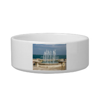 Foutain river sky water coral sketch blur cat food bowls