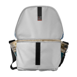 Foutain river sky water coral sketch blur messenger bags